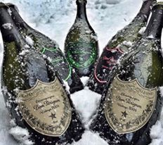 Snow Bunny Champagne